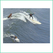Local surfers at San Clemente Beach